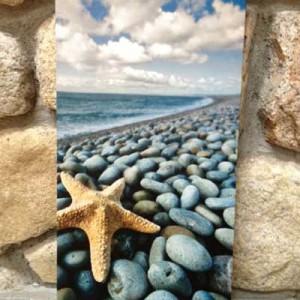 beachprint